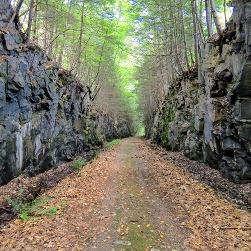 5. Trail