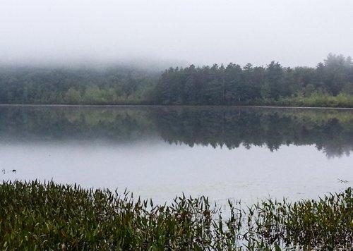 12-half-moon-pond