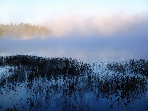 1-half-moon-pond