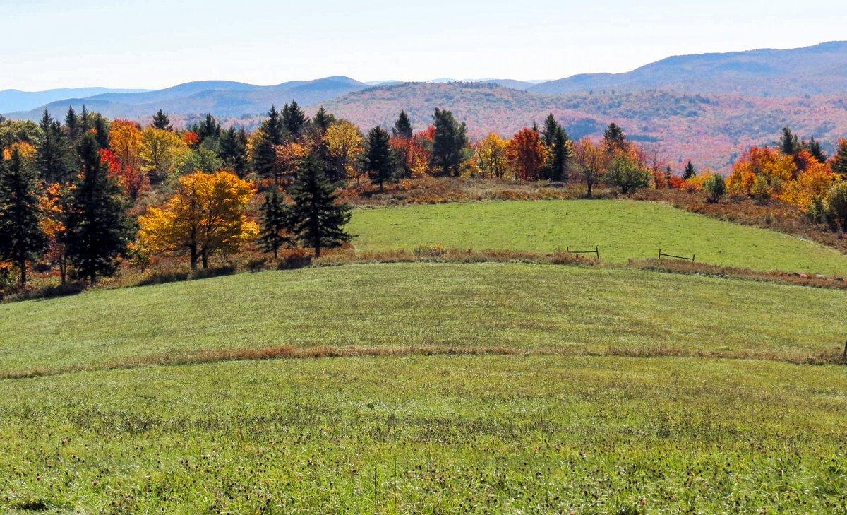 5-pasture