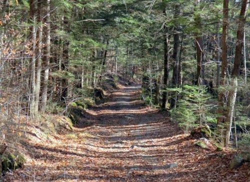 22-trail