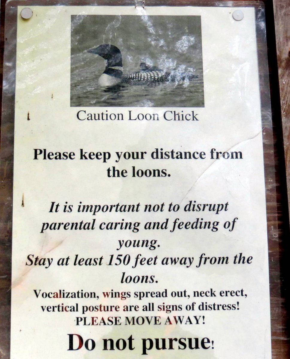 3-loon-sign
