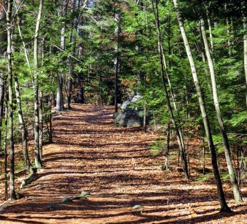7-trail