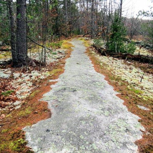 1-trail-start