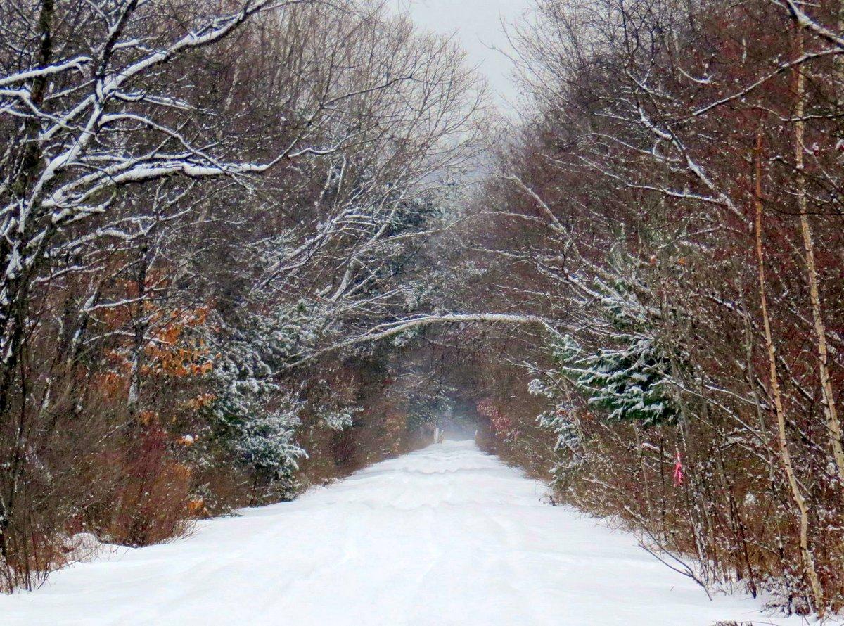 8-rail-trail