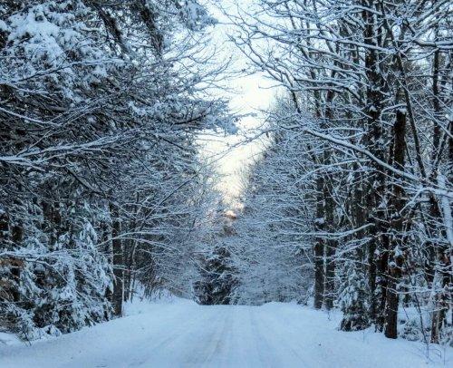 1-snowy-road