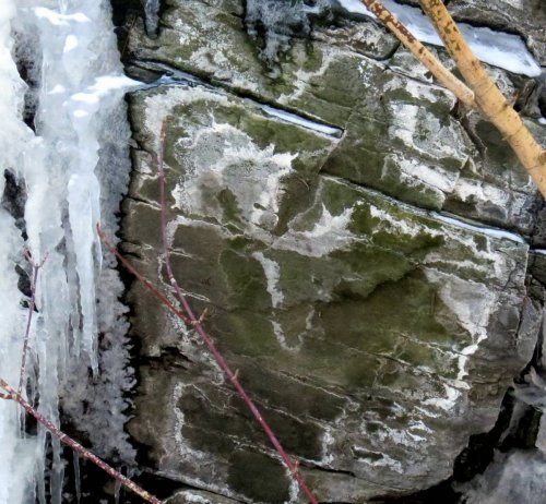 19-frost-on-stone