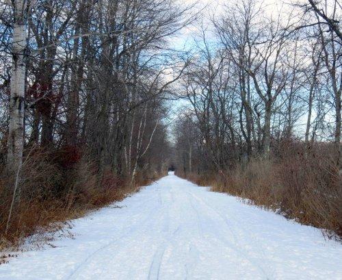 2-trail