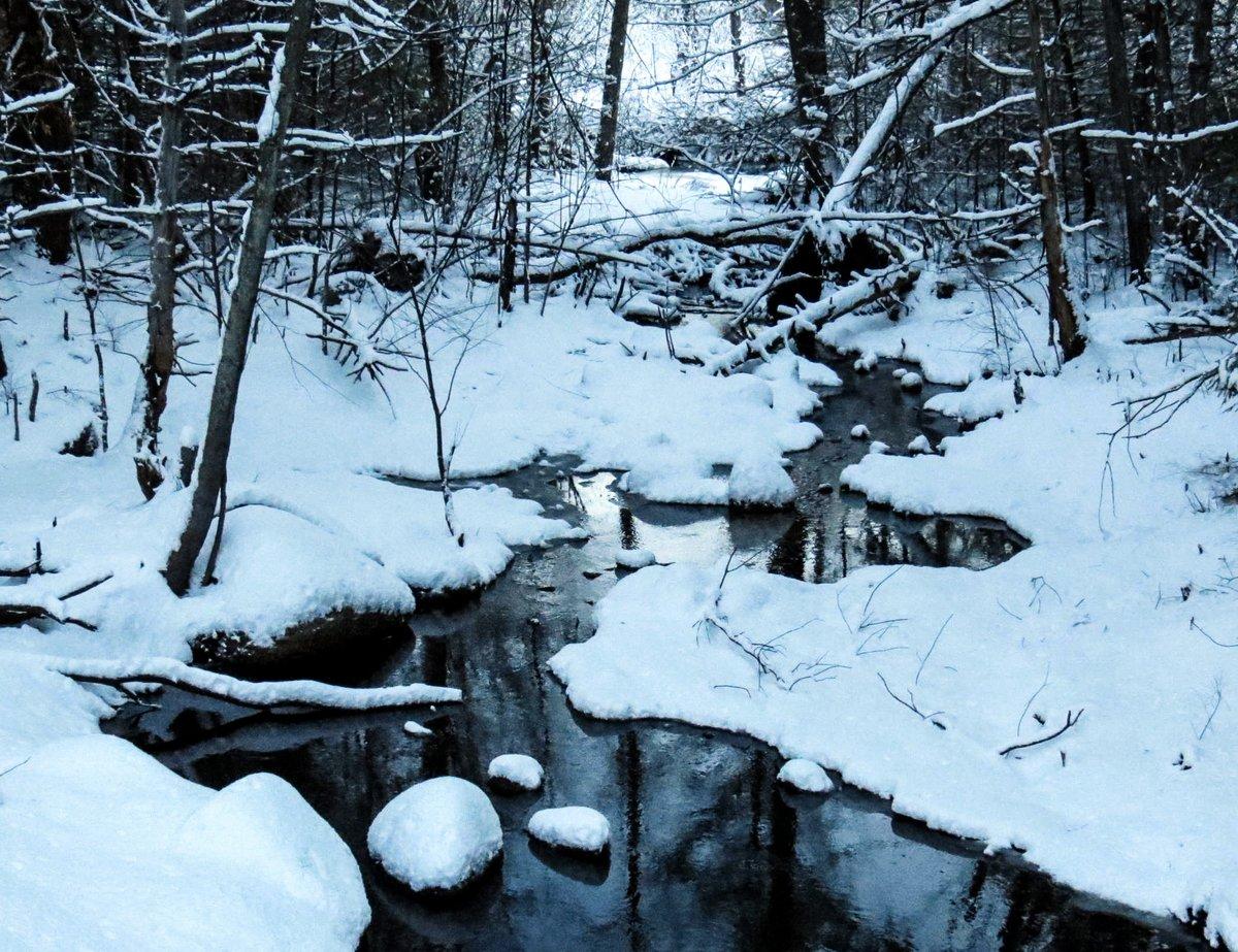 2-winter-brook