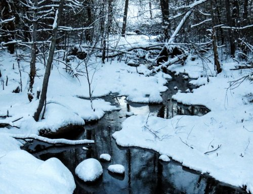 2-winter-brook
