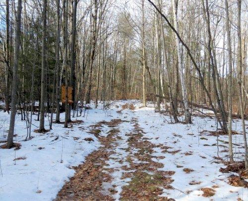 5-trail