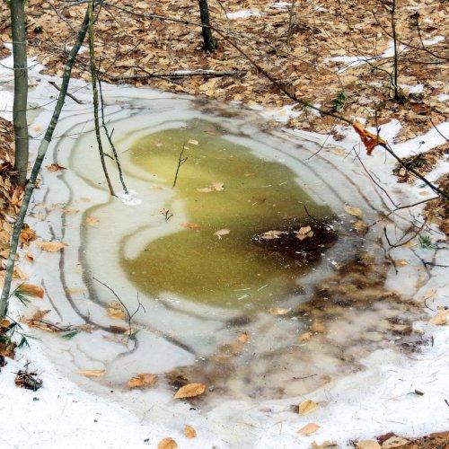 7-puddle