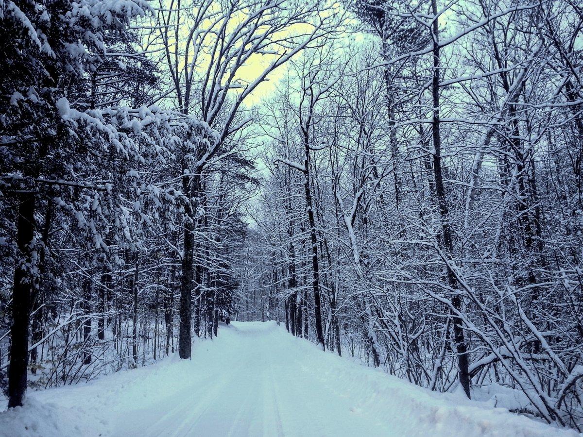 19-snowy-road-2-2