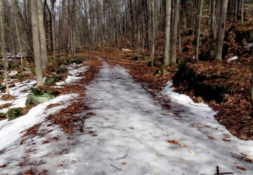 3-icy-trail