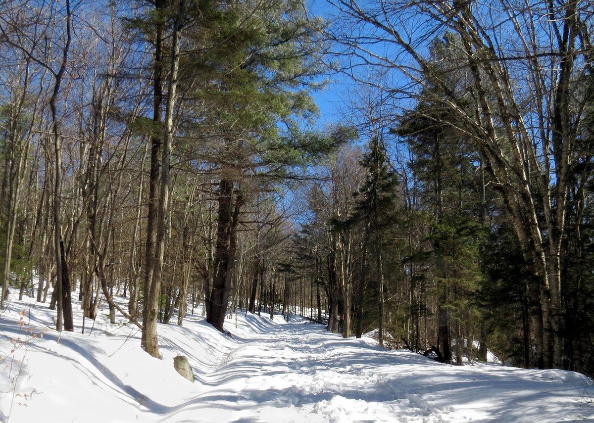 3-trail