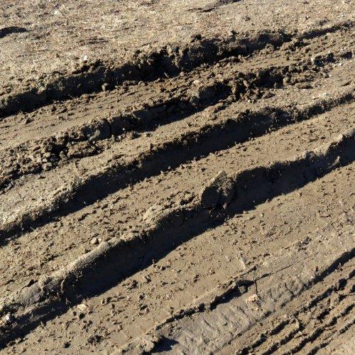 6-mud
