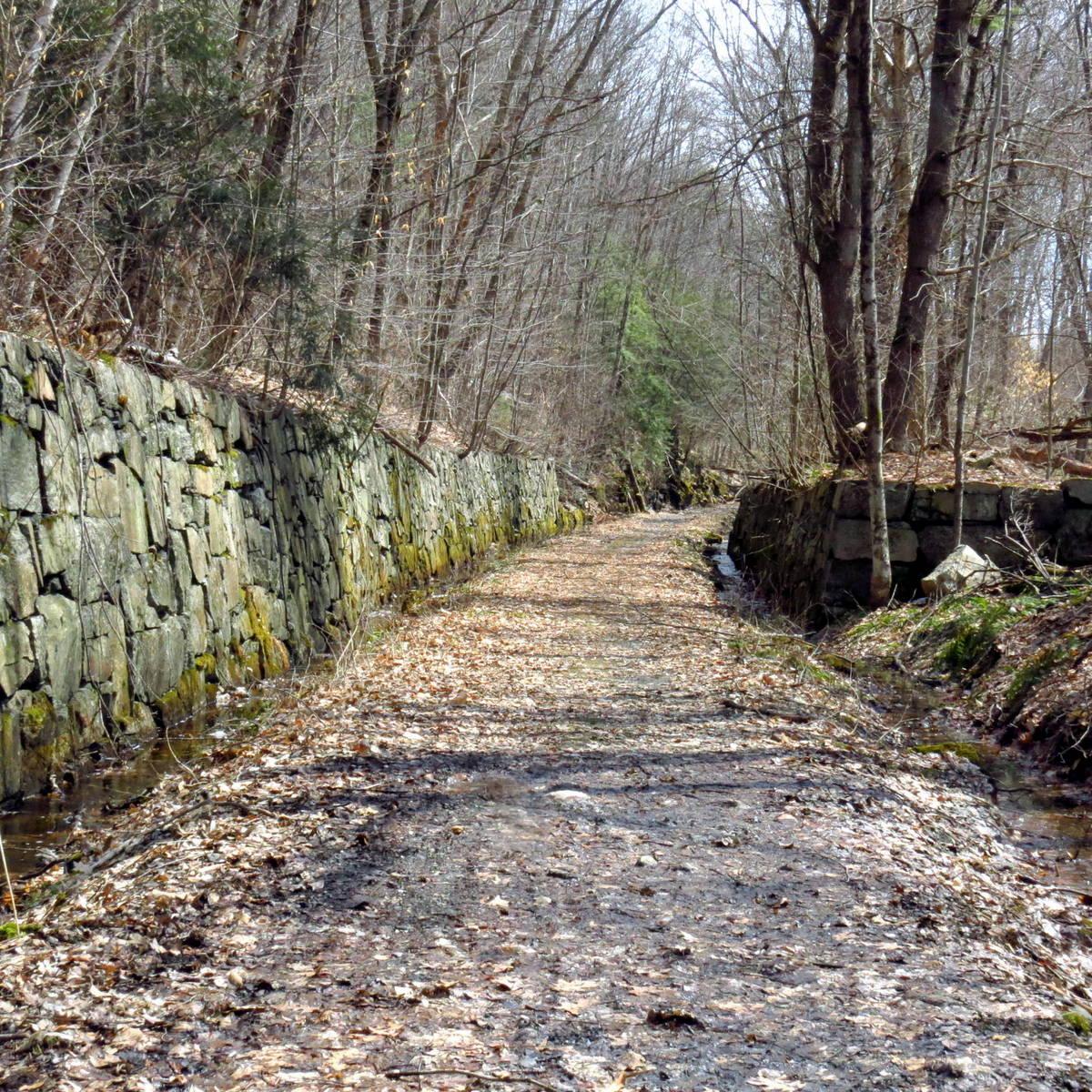 4. Trail